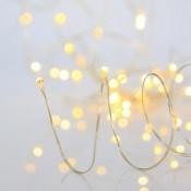 Λαμπάκια LED με σύρμα χαλκού